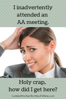 AA-Meeting-Ryan-682x1024